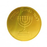 Chanukah Chocolate Coin Milk Large